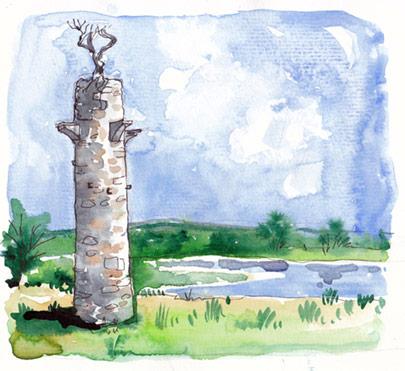 O'Brien Tower at Clogheenmilcon Fen